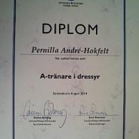 Även Pernilla har blivit utsedd till A-tränare i Dressyr