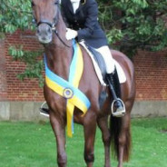Giovanna wins the national mare show